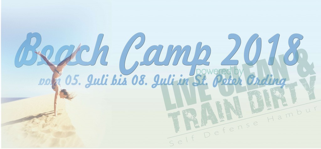 Beach Camp 2018 hd